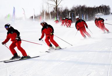 莲花山滑雪 首滑全新雪具 新手免费教学(1日行程)