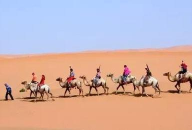 自由自我自娱自乐自唱自歌 享受孤独 体验冬季沙漠(2日行程)