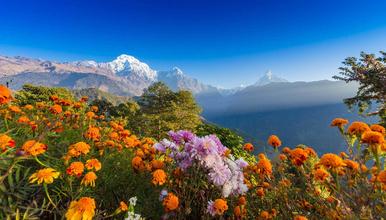 尼泊尔布恩山 尼泊尔ABC环线徒步行程(13日行程)
