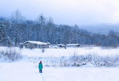 哈尔滨 东升穿越 雪乡 镜泊湖 魔界 长白山 雾凇岛品质纯玩(7日行程)