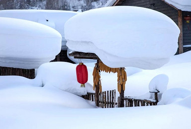 哈尔滨亚布力激情滑雪二浪河雪乡穿越林海镜泊湖冬捕(5日行程)