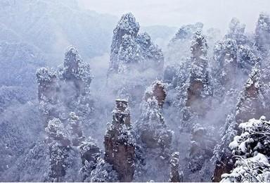 春节高铁 张家界跨年赏雪 挑战大峡谷玻璃桥 游国家森林公园(3日行程)