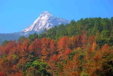 赏片片枫叶情 新丰云髻山登山珠 三角最高峰 海拔1438米(1日行程)