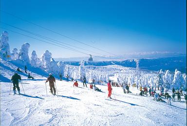 周三特价滑雪云佛山免费教学(1日行程)