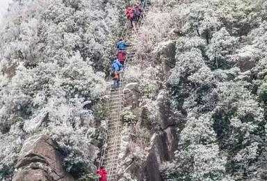 连发两期 挑战金子山天梯 广东最高玻璃廊1417米 森林滑道(1日行程)