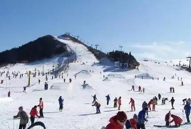 云佛山 单日滑雪体验活动(1日行程)