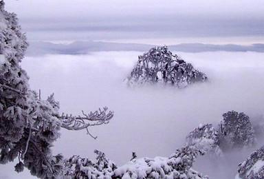 1月19 21日在最美的时候去黄山 赏日出日落(3日行程)
