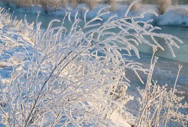 滑雪 雪乡穿越 温泉 雾凇 走进东北冰雪王国 感受雪地奇缘(7日行程)