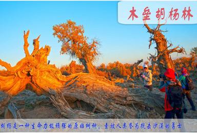 2018醉美新疆 金秋北疆摄影团 寻找最美的新疆美景10天线(10日行程)