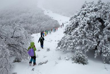 杀猪宰羊备年货 徒步皖南高山草甸 道场坪 偶遇这片雪(3日行程)