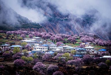 滇藏新通道 丙察察进藏 秘境甲应村 看最美的林芝桃花(10日行程)