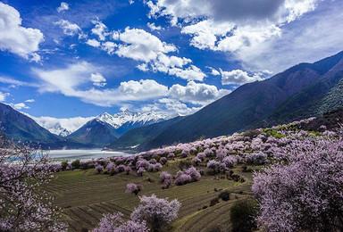 3月花季 丙察察进藏 看最美的林芝桃花 深度摄影游(10日行程)