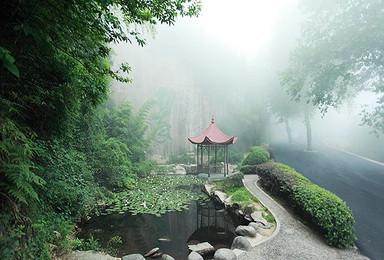 3月3日清心之旅 春游莫干山休闲徒步(1日行程)