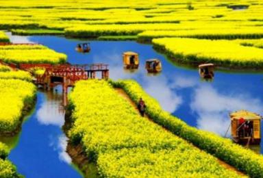 扬州 多期 梦回扬州 兴化油菜花 瘦西湖 何园休闲赏花摄影游(2日行程)