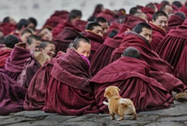 精品小团  朝圣佛国色达 、甲居藏寨(5日行程)