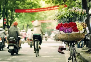 越南 浪漫之旅(7日行程)