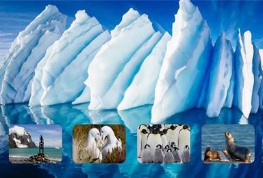 2018南极探险 企鹅温泉浴雪山冲锋艇南美风情(16日行程)