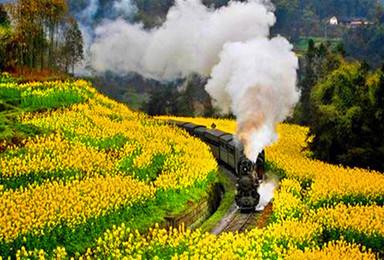 清明节 黄山 宏村 呈坎 灵山赏油菜花梯田 可代订火车票(4日行程)