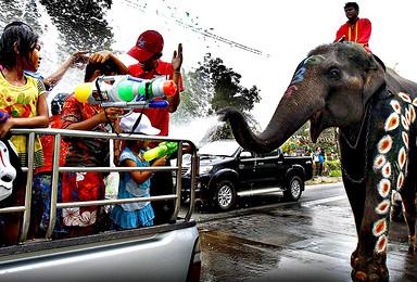 泰国清迈泼水节 感受最泰的泰国新年(7日行程)