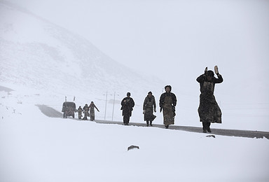 阿里 岡仁波齊 轉山 一錯再錯 或雙湖 冰川 雪山(15日行程)