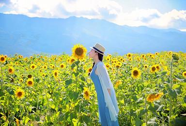 完美假期亲子游 香格里拉 泸沽湖 大理纯玩之旅(6日行程)