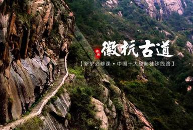 3月16晚出发 油菜花观赏线 徽杭古道 龙须山(3日行程)