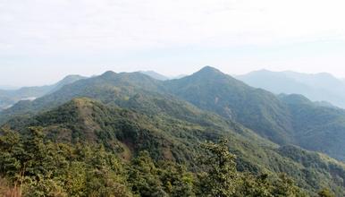 广州出发从化探秘烧伤岭爬山 从化第九高峰 海拔1009米(1日行程)