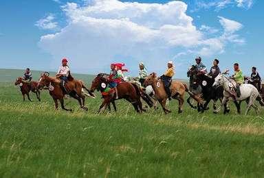 五一坝上草原 骑马 免费烤全羊 篝火狂欢 游白桦林(3日行程)