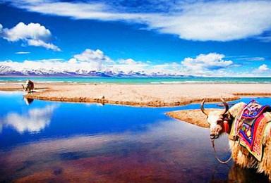 趣哪儿游 走进中国最美的峡谷 探秘大美西藏(8日行程)