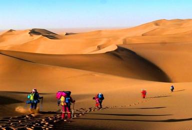 深入腾格里 穿越沙漠腹地 星夜露营 野外生活 深度游(4日行程)