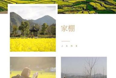 春季赏花 3月23 25日徽杭古道 龙川古镇 家朋油菜花田(3日行程)
