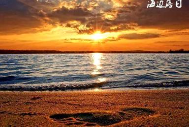 惠州喜洲岛 烧烤 沙滩音乐 篝火 快艇冲浪 捉海鲜(2日行程)