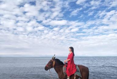 青海湖(1日行程)