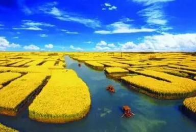 扬州 纯玩自然山水之胜 历史文物之雅(2日行程)