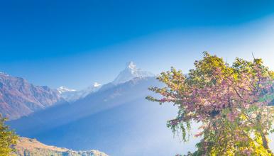 ACT尼泊尔 喜马拉雅 安娜普尔纳大环徒步(14日行程)