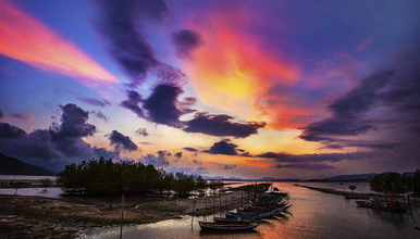 惠东双月湾 行摄盐洲滩涂鹭鸟 双月湾观景捕鱼两天游(2日行程)