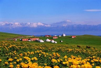暑期新疆伊犁天山环线8日(8日行程)