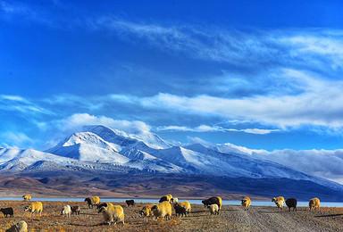 藏区全程覆盖川藏青藏珠峰阿里日喀则18天带你领略藏式风情(18日行程)