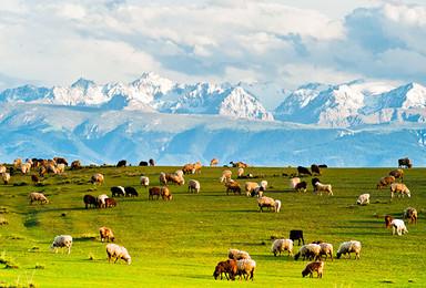 6月份约伴去新疆 这里 美食美景每天不重复(8日行程)