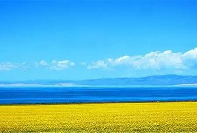暑期活动 去青海湖  过一个不一样的夏天(5日行程)