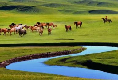 呼伦贝尔寻北之旅中国最北点漠河8天8晚深度自助游(8日行程)