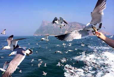神奇海岛游  长岛 蓬莱 万鸟岛(4日行程)