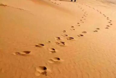 轻装沙漠徒步丨腾格里沙漠徒步体验丨苍天圣地阿拉善(2日行程)