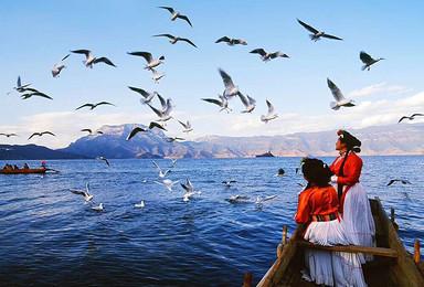 泸沽湖纯玩网红旅拍线 留住最美的瞬间(2日行程)