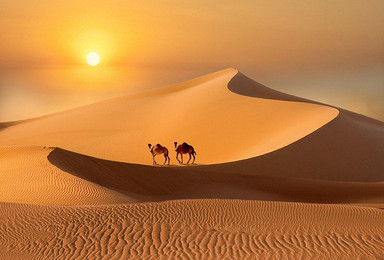 十一腾格里沙漠 10 4 6用脚步丈量沙漠 五湖连穿(3日行程)