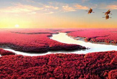 行摄红海滩 长白山红叶(7日行程)