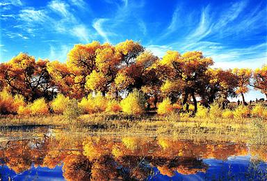 南疆泽普金色胡杨 沙漠公路胡杨 大峡谷 红海湾水中胡杨 喀什(13日行程)