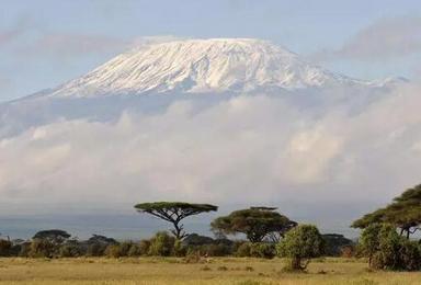 夏尔巴探险 非洲之巅 5895乞力马扎罗登山计划(9日行程)