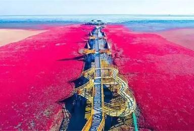 红海滩 天下奇观红海滩 神奇天路笔架山 全程无夜车(3日行程)