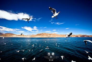 极地阿里穿越冒险之旅 走进无人区体验别样生活全程商务越野小团(13日行程)